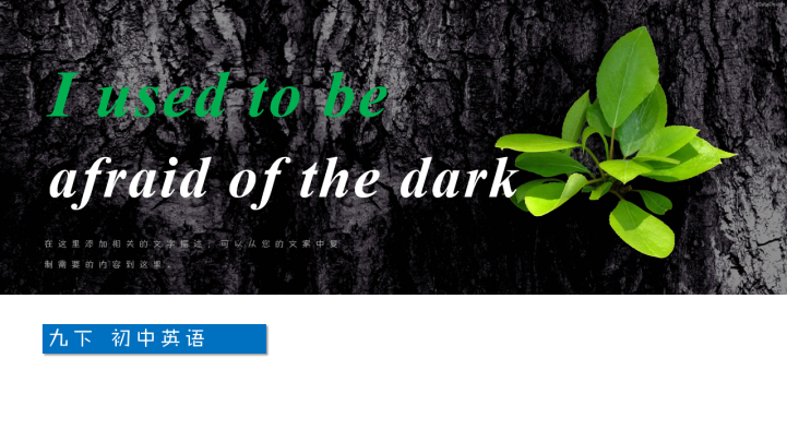 《i used to be afraid of the dark》PPT课件