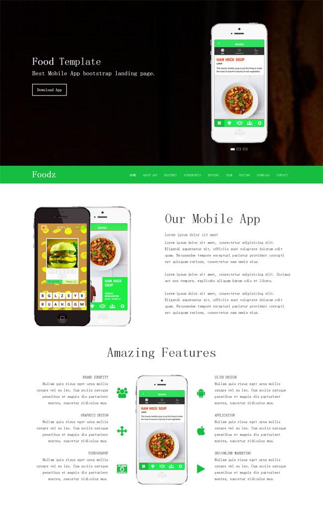 美食app介绍网站模板_免费模板