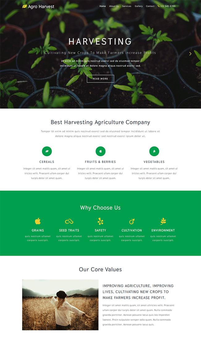 专业的花草种植网页模板