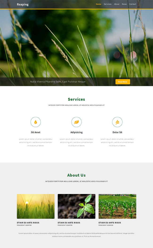 农业发展有限公司网站模板