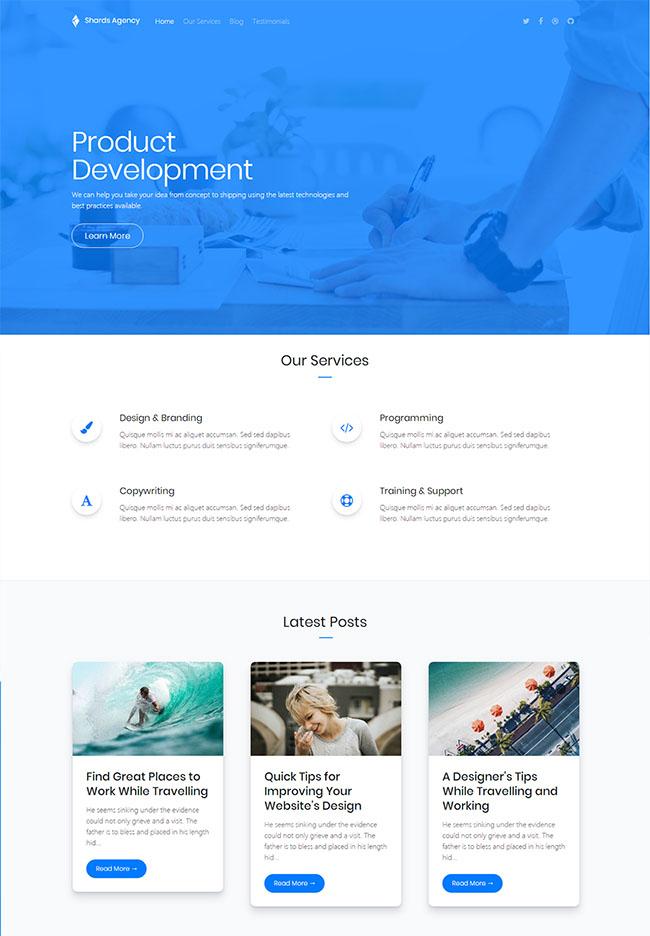 蓝色大气背景开发者网页模板