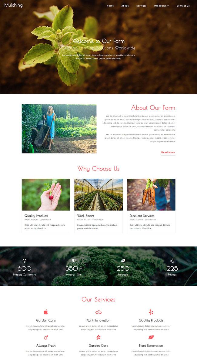 简洁农场种植企业网站模板