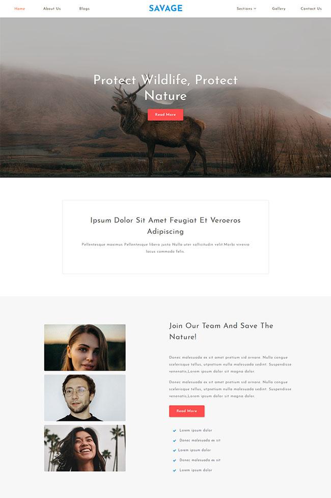 保护野生动物网站模板