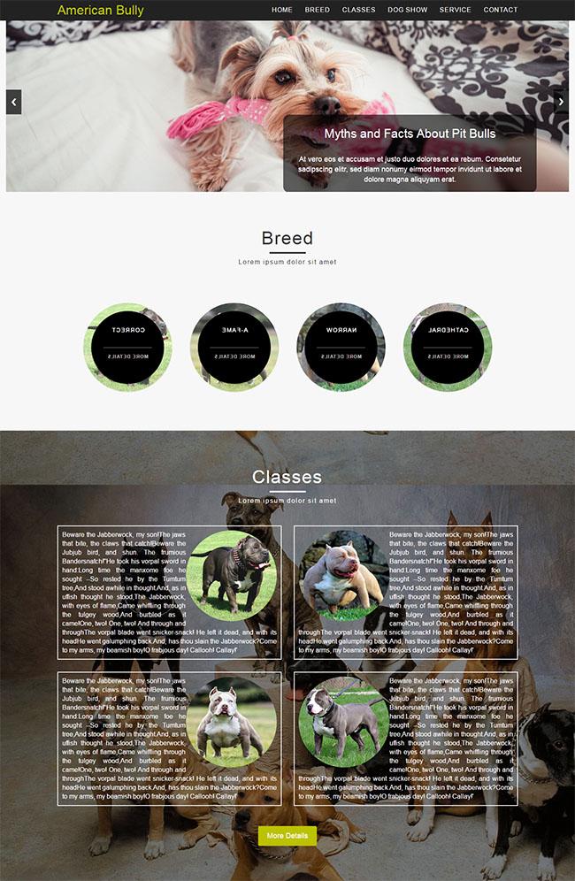 宠物狗乐园响应式网站模板