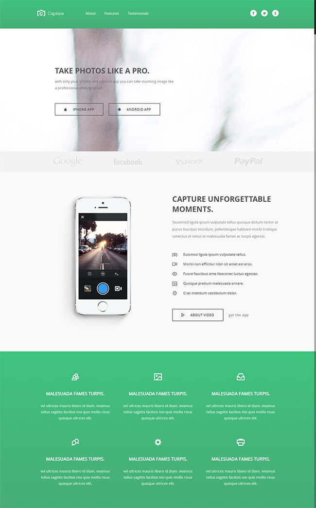 移动应用程序企业网站模板