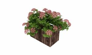 戶外花盆3d模型