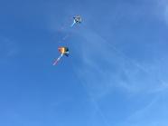 高空兩只風箏圖片