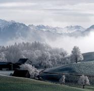 鄉村意境唯美風景圖片
