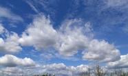 藍天白云飄云圖片