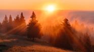 清晨唯美日出圖片