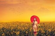 向日葵花海美女唯美寫真圖片