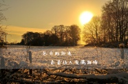 冬季唯美文字圖片