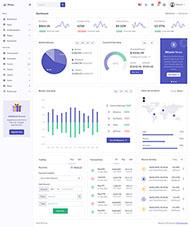 電商app數據統計后臺管理模板