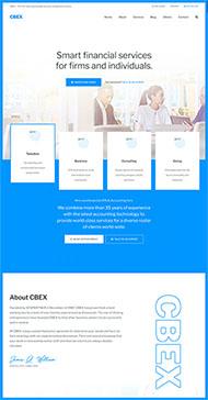 藍色會計財務公司網站模板