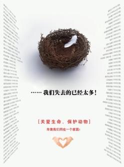保護動物公益海報設計