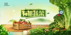 有機蔬菜廣告海報設計