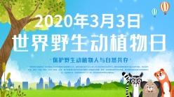 世界野生動植物日主題海報設計